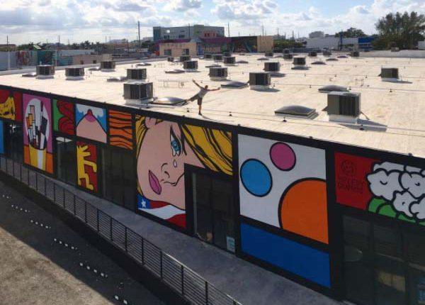 Graffiti-Speedy-Graphito-Art-Urbain-Miami-Oeuvre